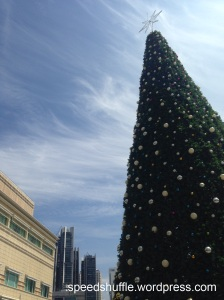 A tropical Christmas!