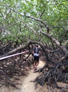 Running THROUGH the mangroves!