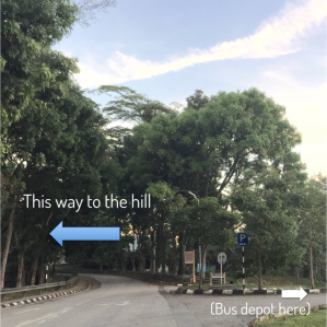 #2 - The foot of the hill